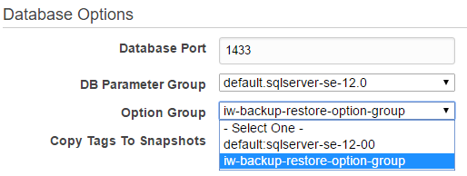 The section Database Options where you select your Option Group (iw-backup-restore-option-group)