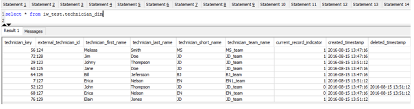 The state of technician_dim table after running the pipeline